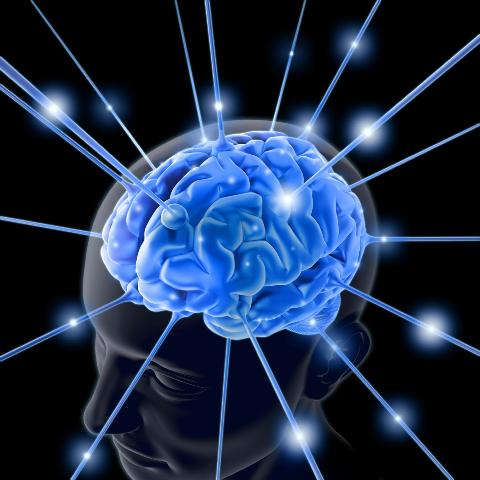 8 Kecerdasan Manusia.. Agan Yg Mn?? [ www.Up2Det.com ]